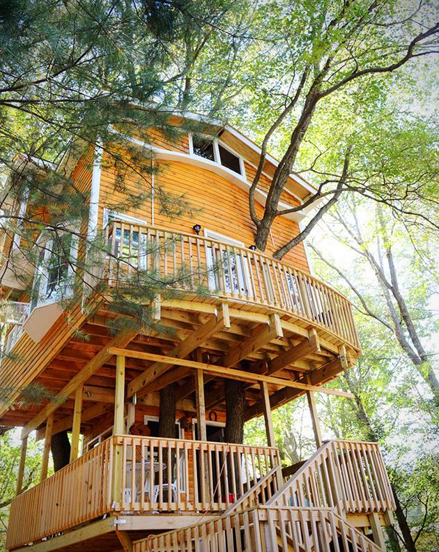 3-Story Treehouse