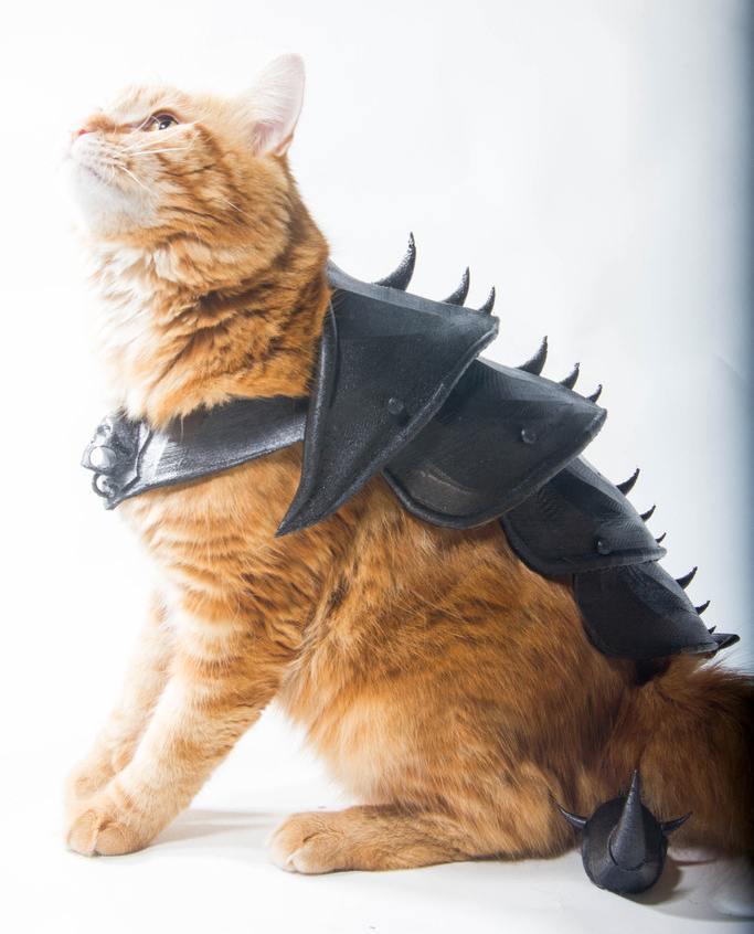 3D-Printed Cat Armor