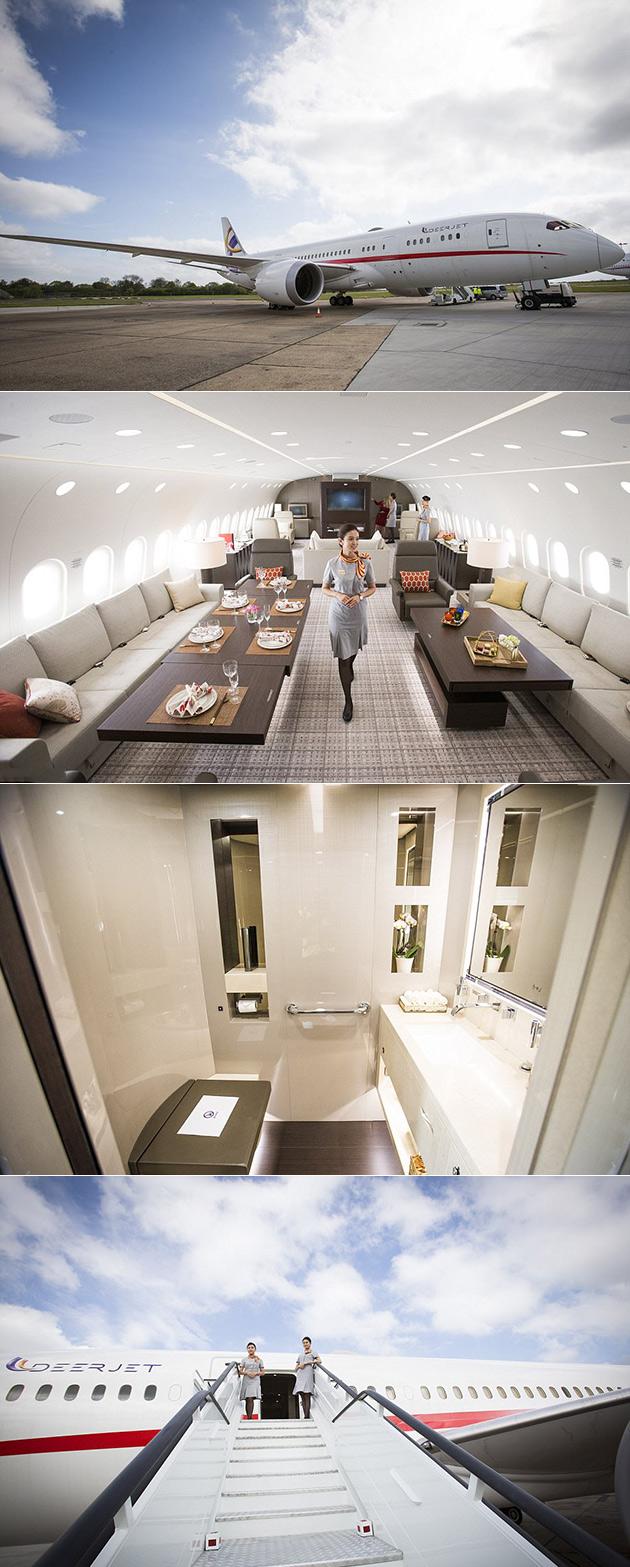787 Dreamliner VVIP
