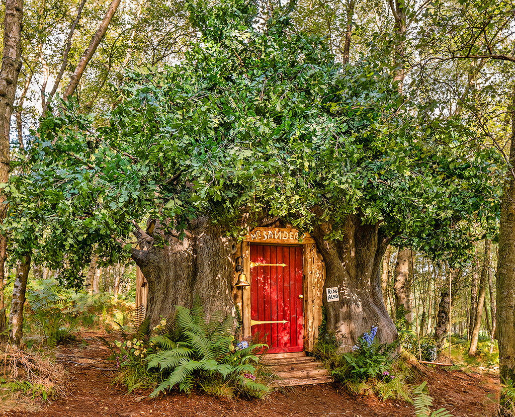 Airbnb Winnie-the-Pooh Treehouse Hundred Acre Wood