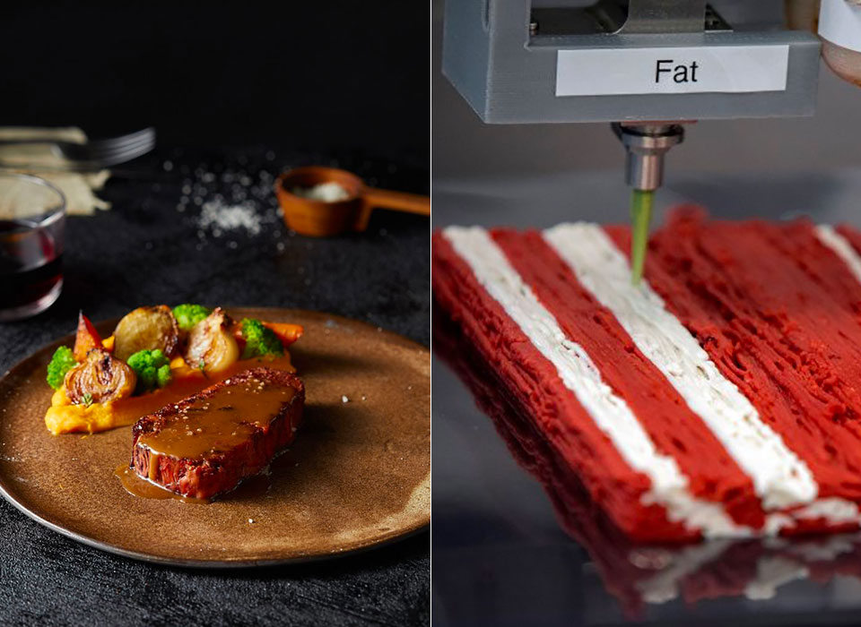 Alt-Steak 3D-Printed Meatless