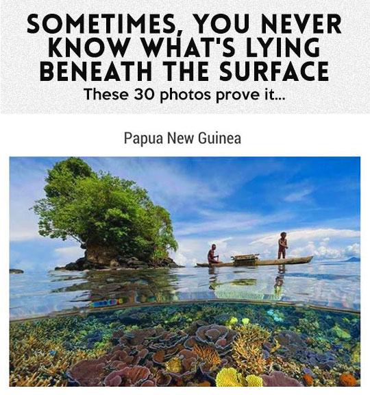 Amazing Underwater Split-Shot Photographs