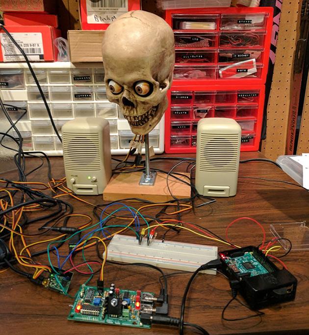 Amazon Alexa Skull