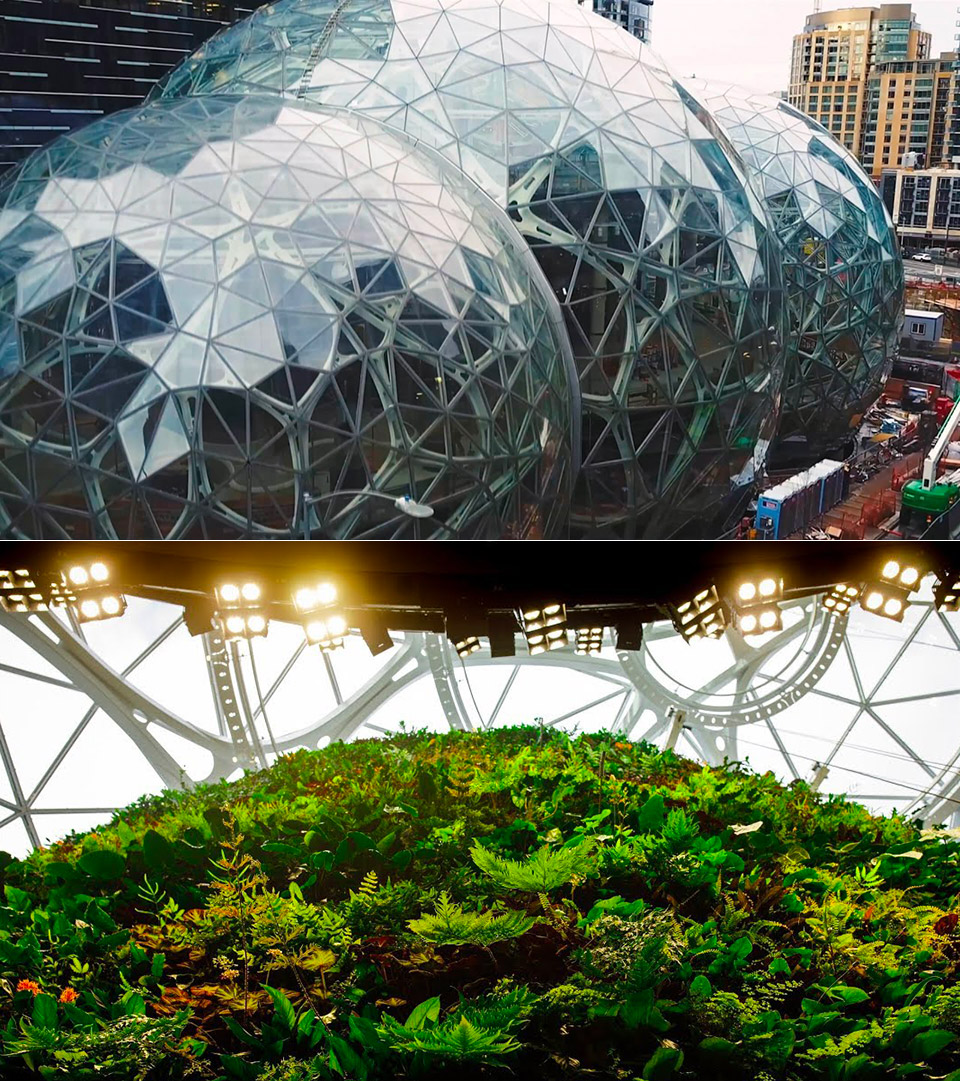 Amazon Sphere Office