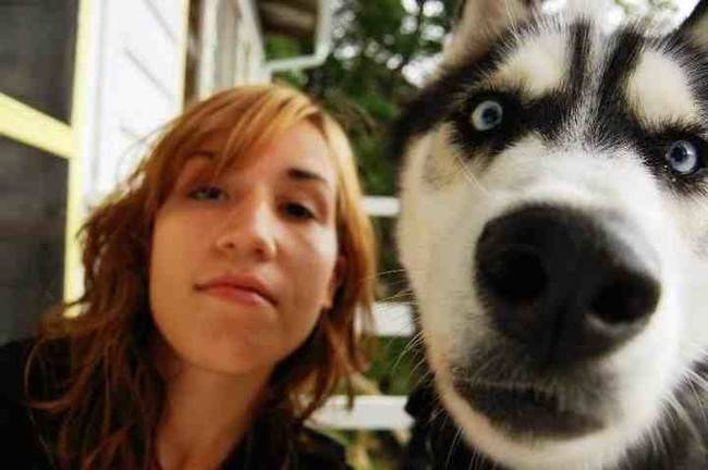 Animal Selfies Funny