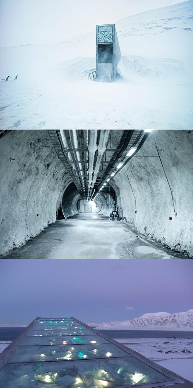 Arctic Seed Vault