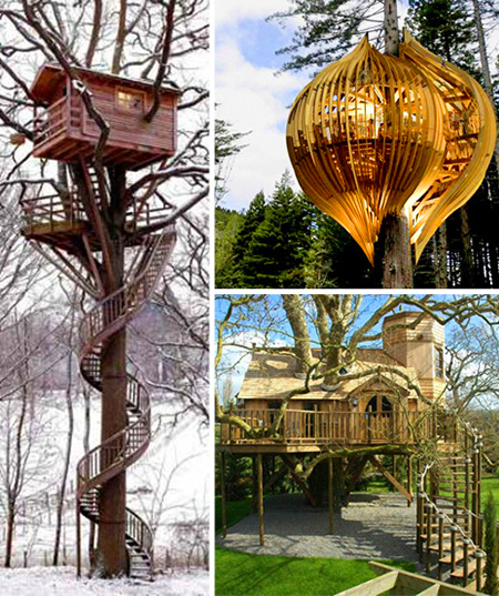 10 awesome tree houses that make living outdoors fun for Houses built in trees