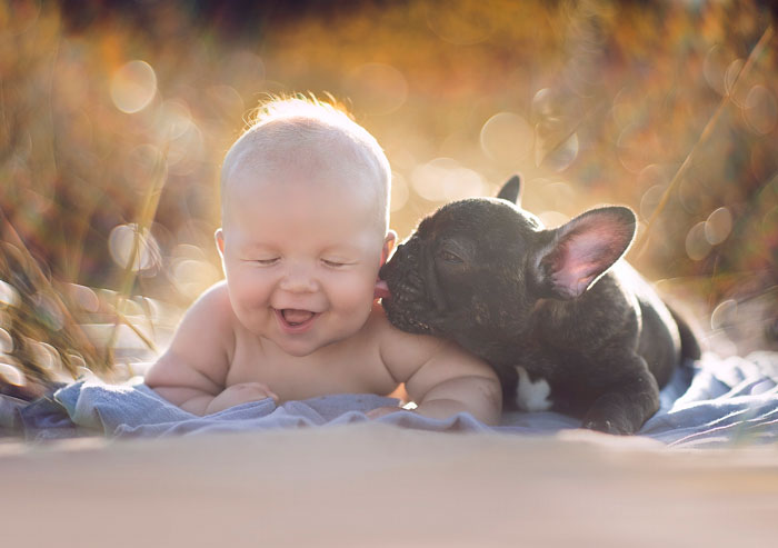 Baby and Bulldog Born Same Day