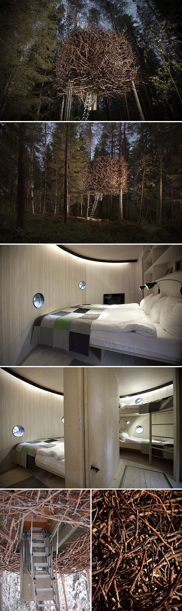 Bird's Nest Treehotel