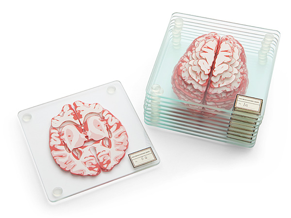 Brain Specimen Coaster