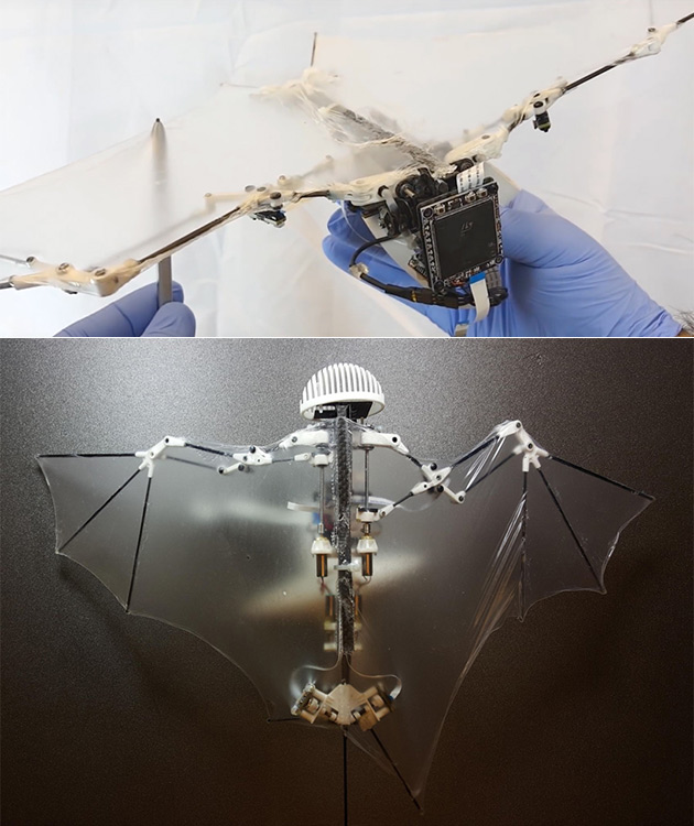 Caltech Robot Bat