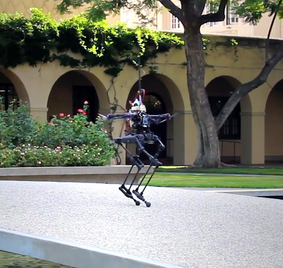 Caltech Leonardo Robot