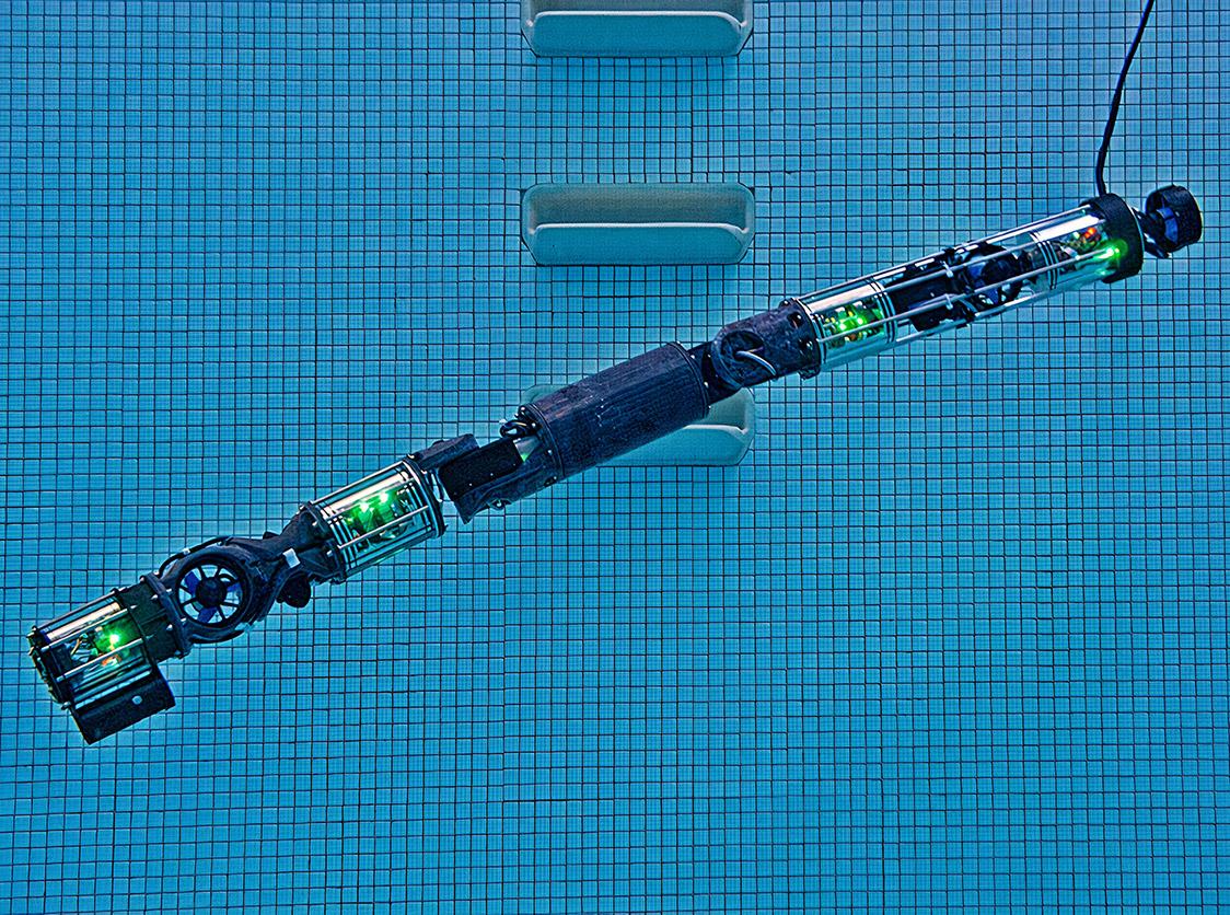 Carnegie Mellon Underwater Robotic Snake