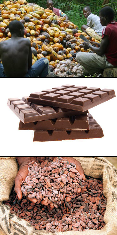 Cocoa Farmers Try Chocolate for the First Time, These Priceless Reactions Ensue