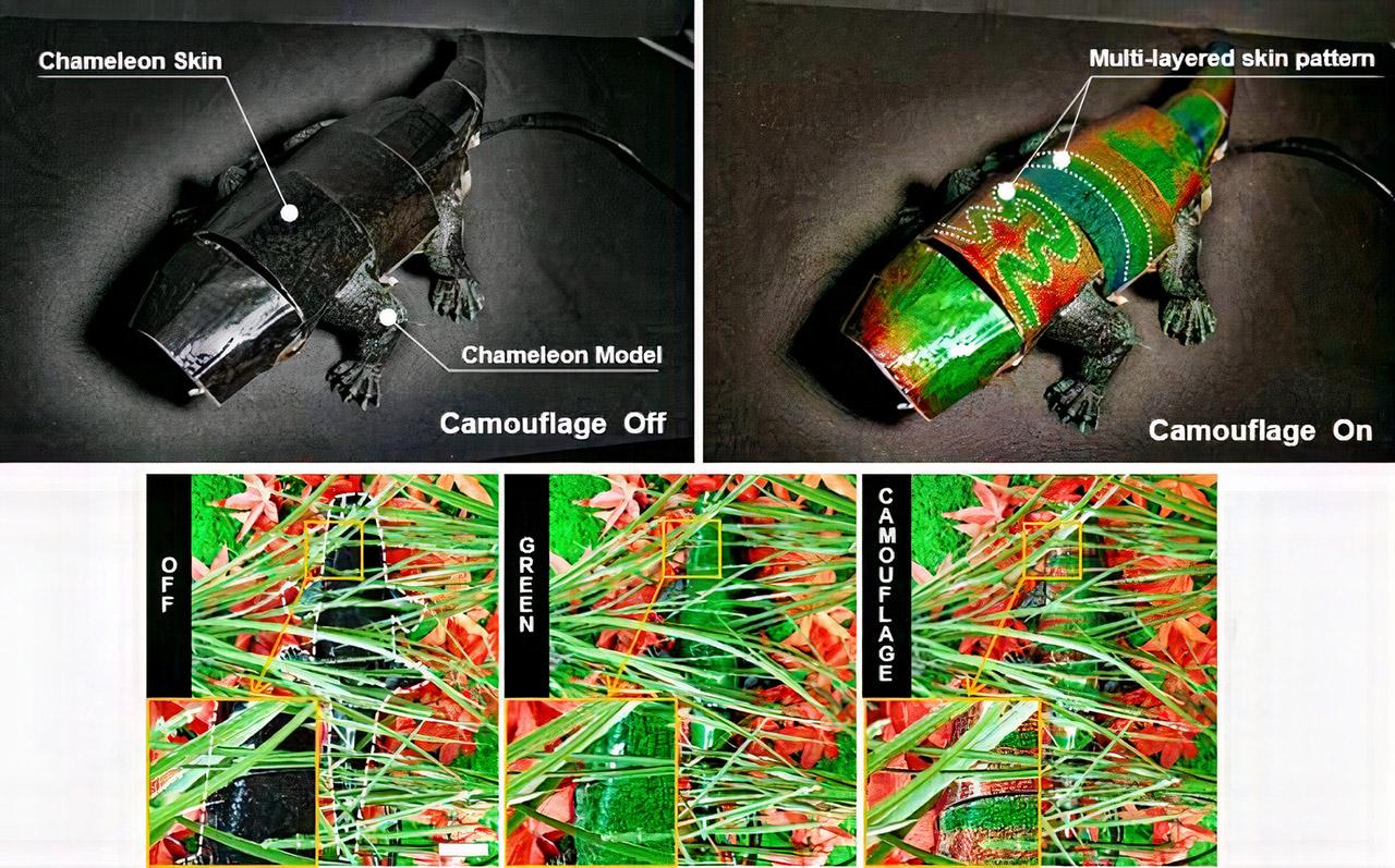 Color-Changing Chameleon Robot