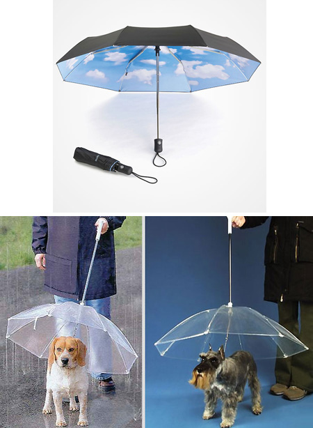 Weather Station & Umbrella Set | Staples®