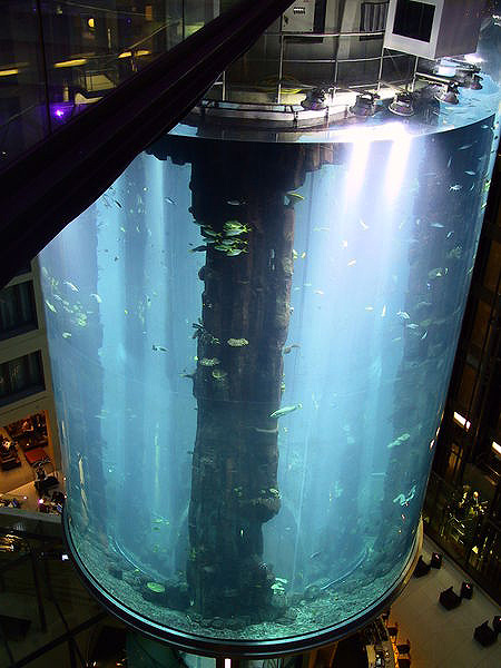 Feature The World 39 S Largest Cylindrical Fish Aquarium