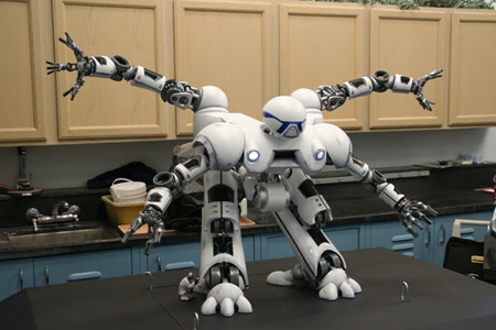 Disaster Relief Robot