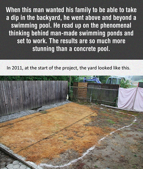 DIY Backyard Pool
