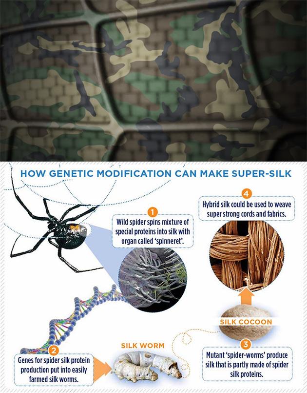 Dragon Silk Spider Silk Armor