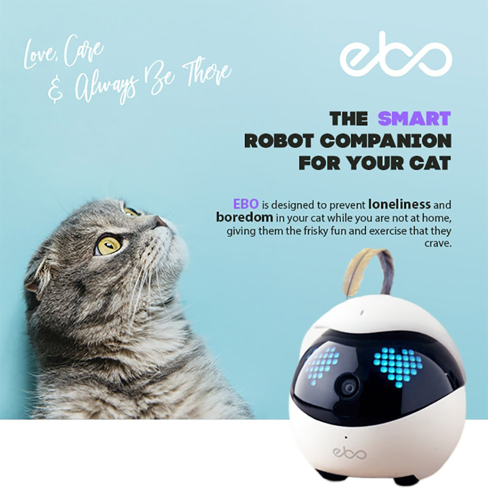 Ebo Cat Smart Robot Companion