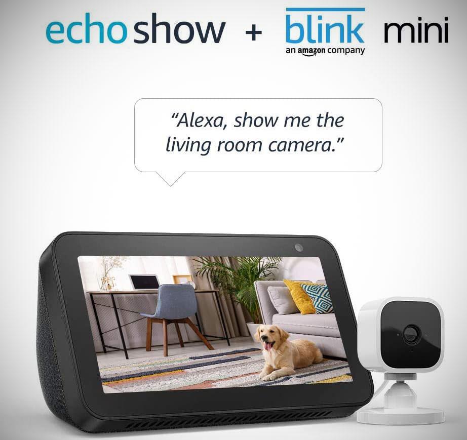 Echo Show 5 Blink Security Camera