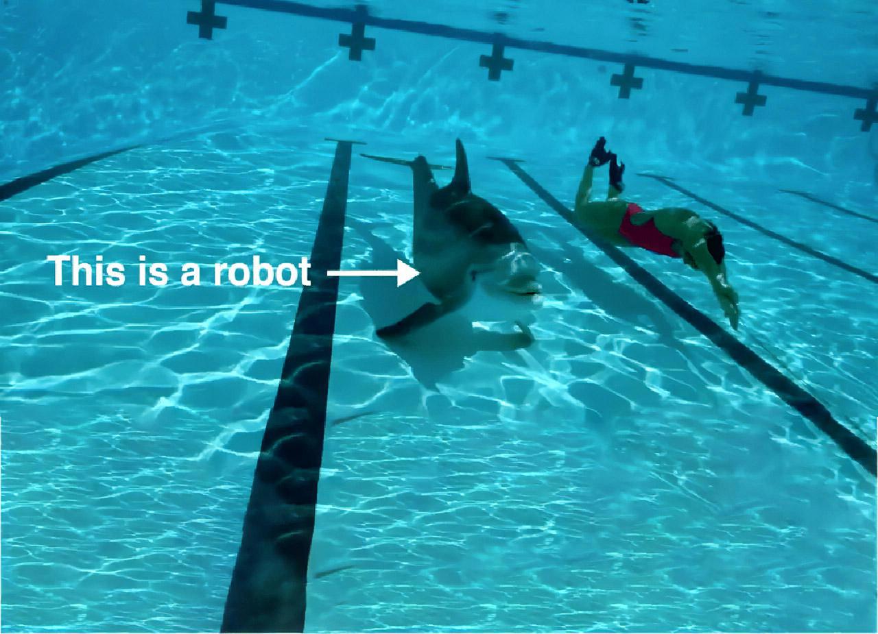 Edge Innovations Robotic Robot Dolphin