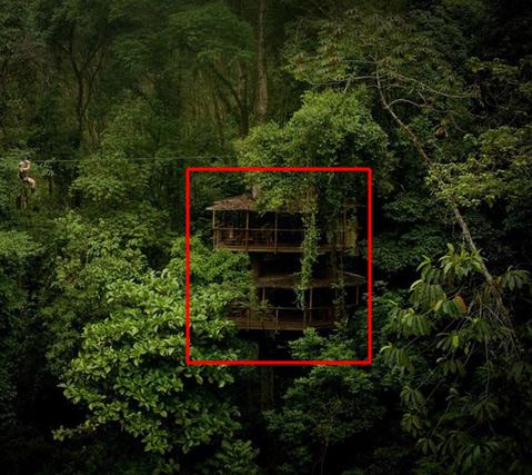 Ewok Treehouse