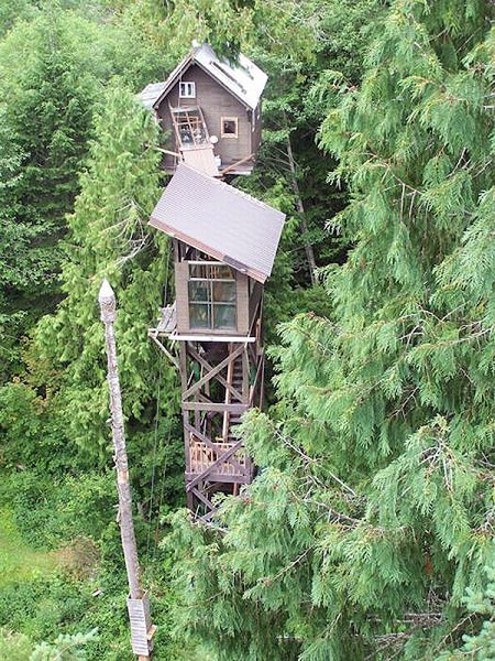 World 39 S Most Extreme Tree Houses TechEBlog