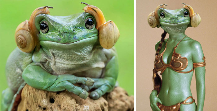 Frog Princess Leia