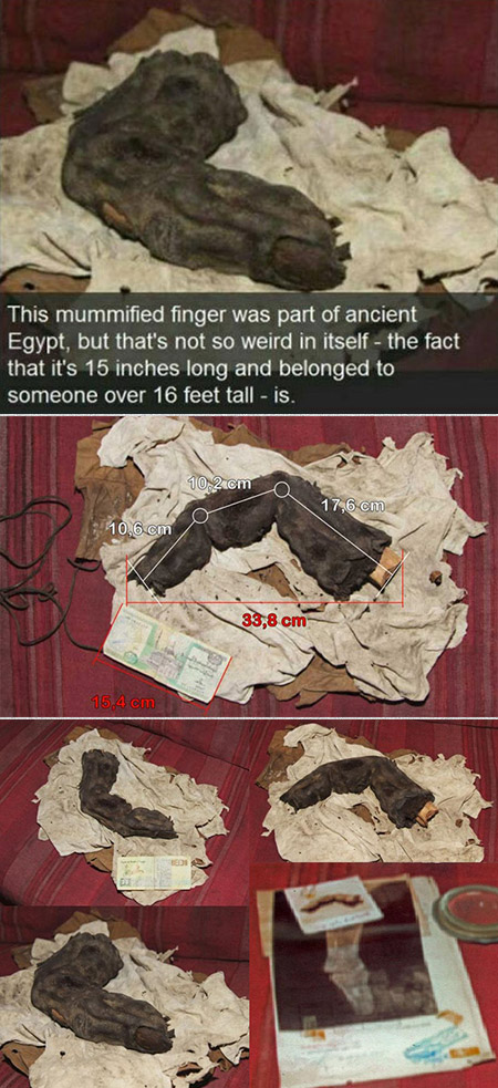 Giant Mummified Finger