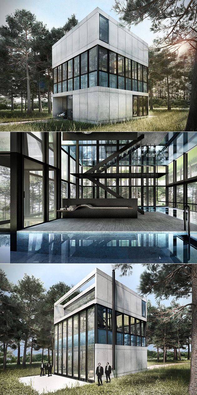 Glass Pool House