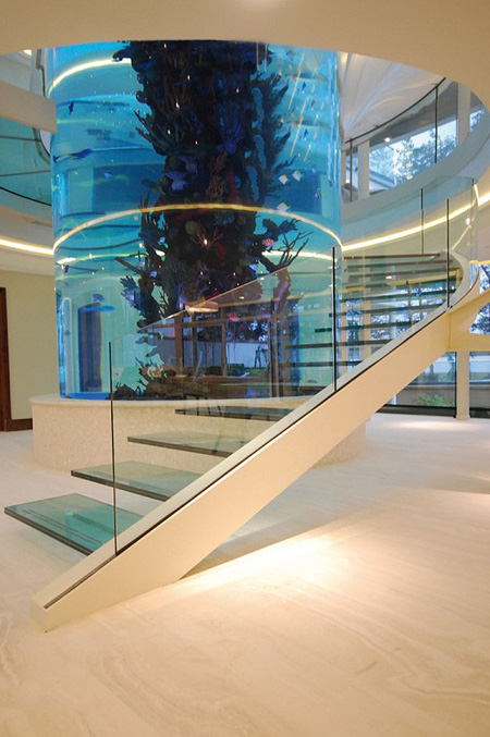 stunning glass helical staircase built around a