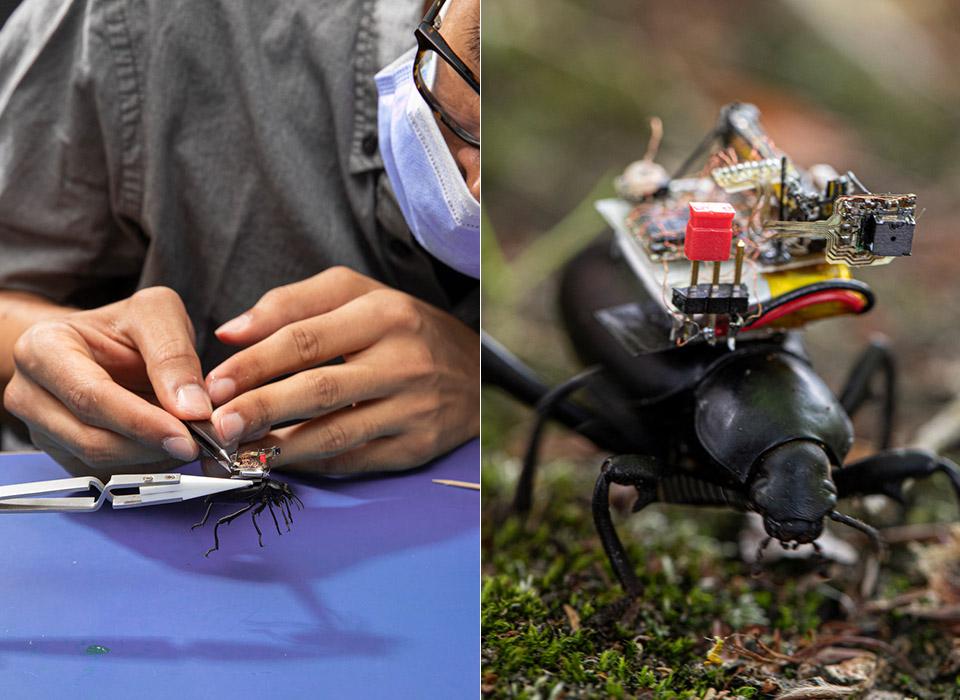 GoPro Beetles Camera Backpack