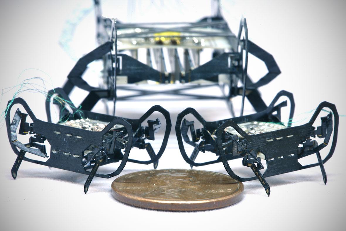 HAMR-Jr Quadrupedal Robot
