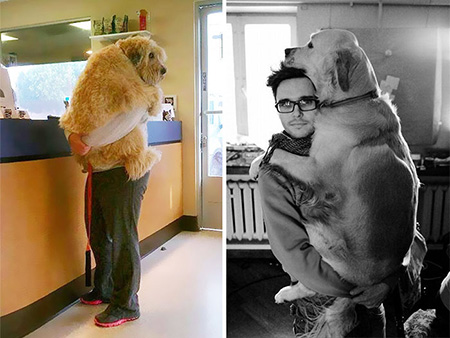 Hugging Dogs