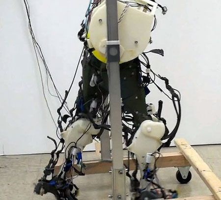 researchers develop robotic legs that walk exactly like