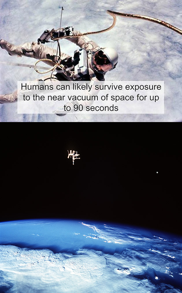 Humans Survive Space