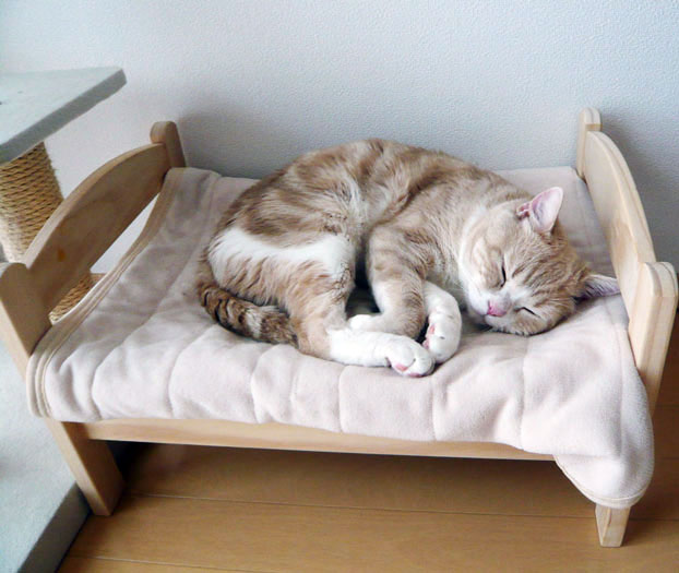 IKEA Cat Bed