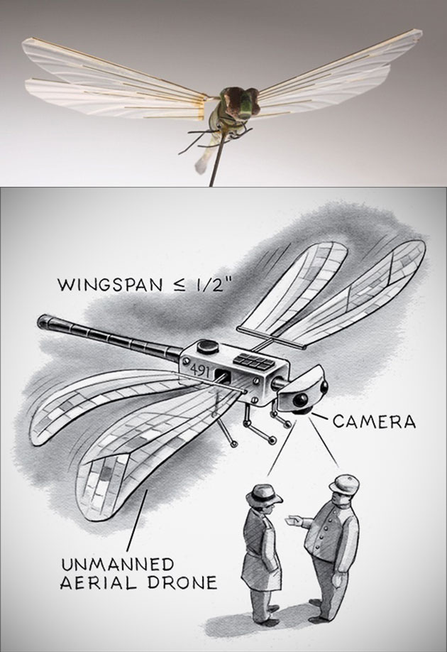 Insectothopter Dragonfly Drone
