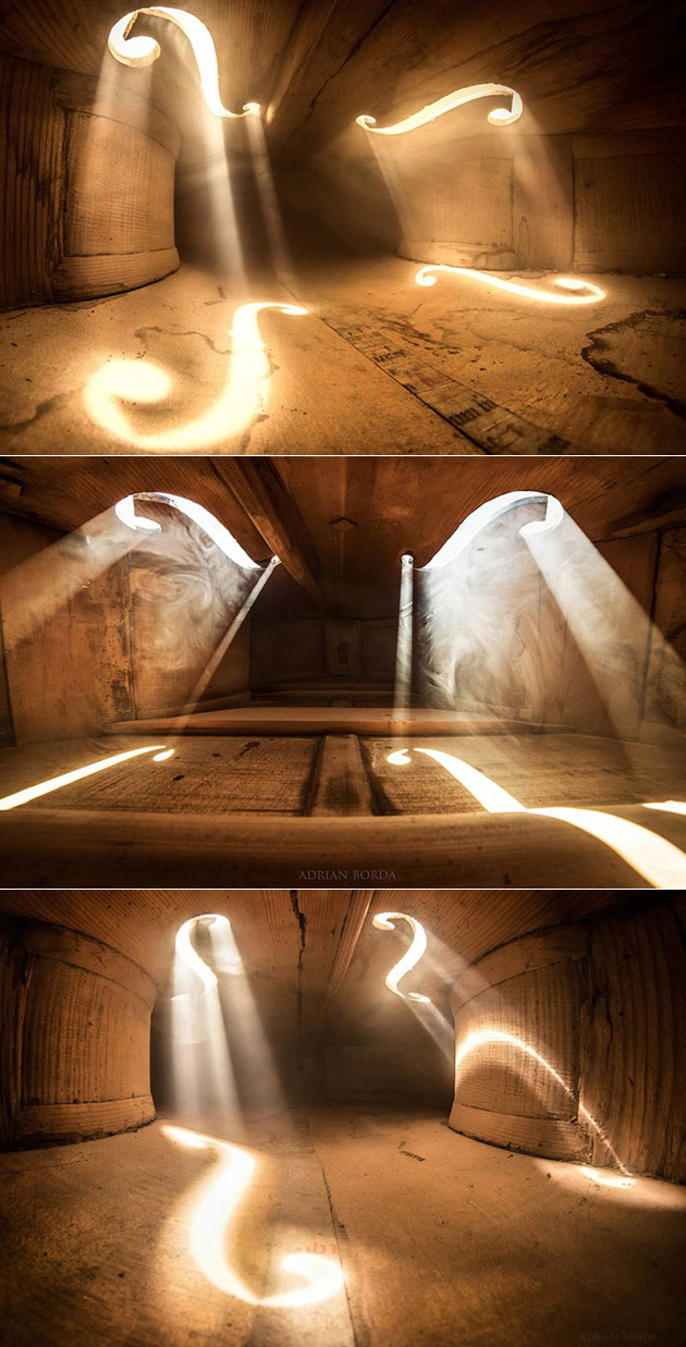 Inside a Cello