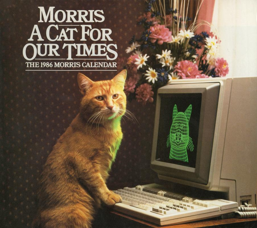 Internet Meme Morris Cat