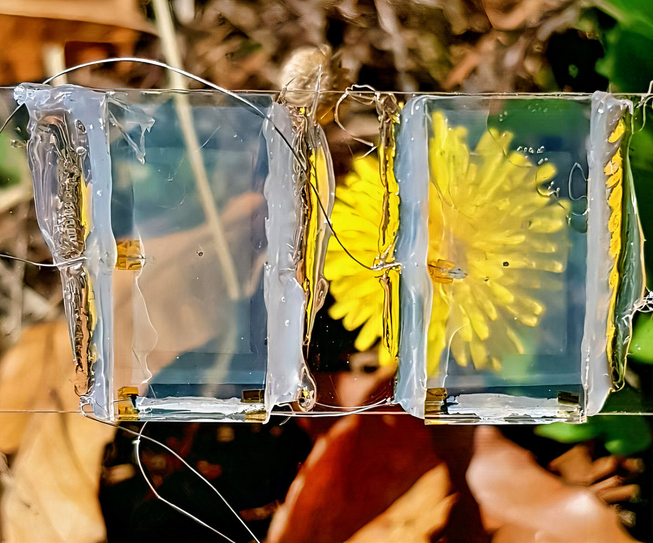 Invisible Solar Cell Electricity Generation