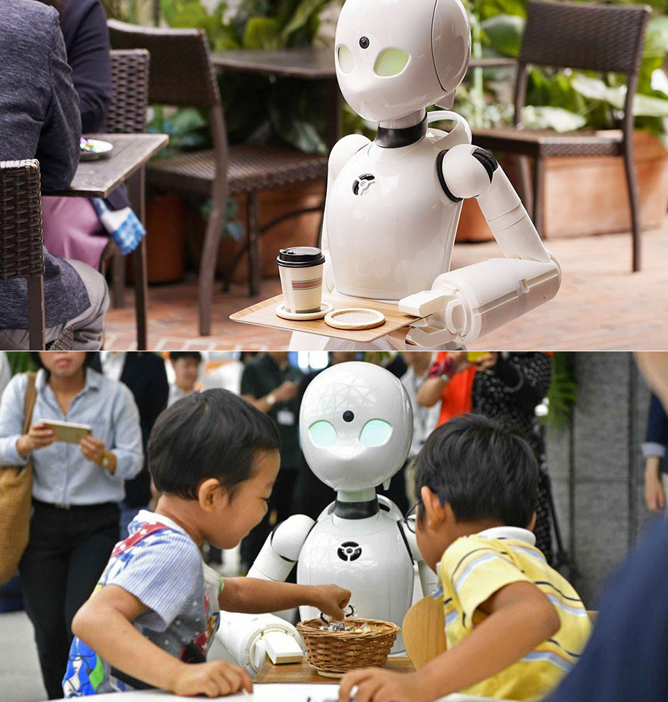 Japanese Cafe Robots Paralyzed