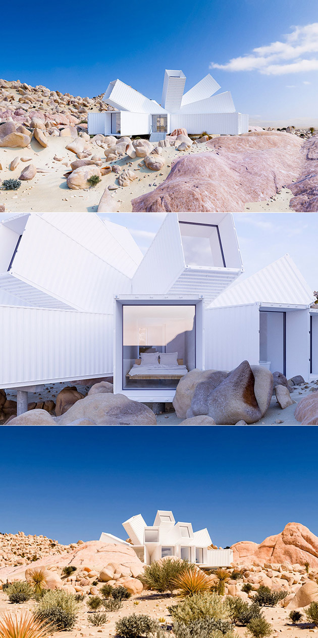 Joshua Tree Shipping Container