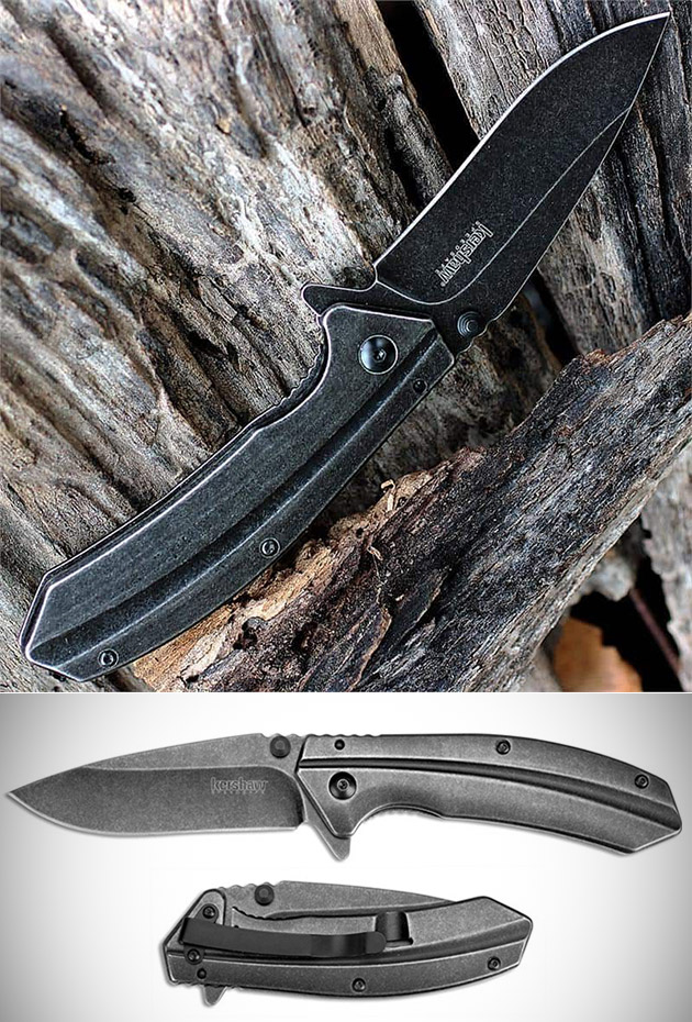 Kershaw Filter Folding Pocket Knife