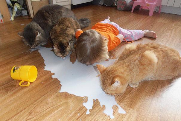 Kids Think Animals