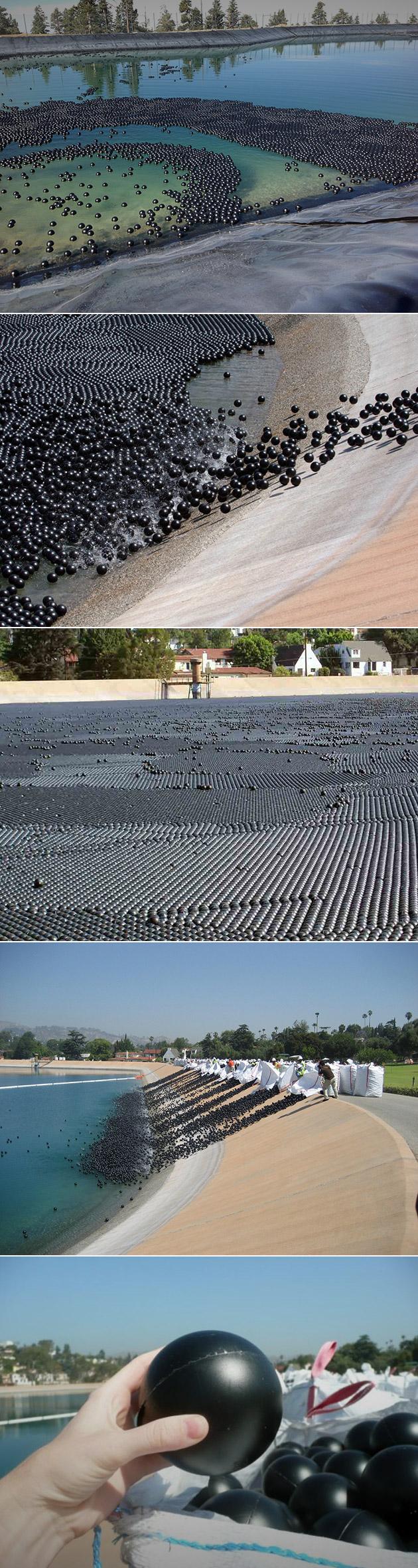 Los Angeles Reservoir Black Balls