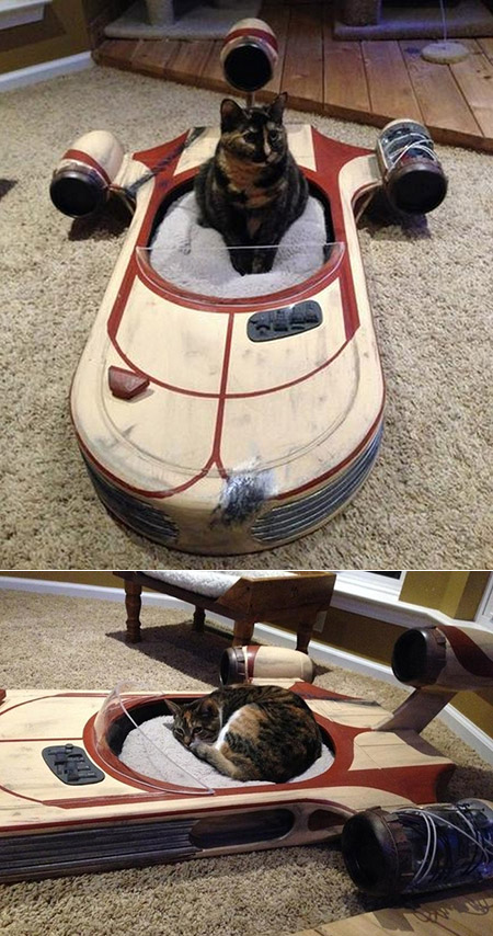 Landspeeder Cat Bed