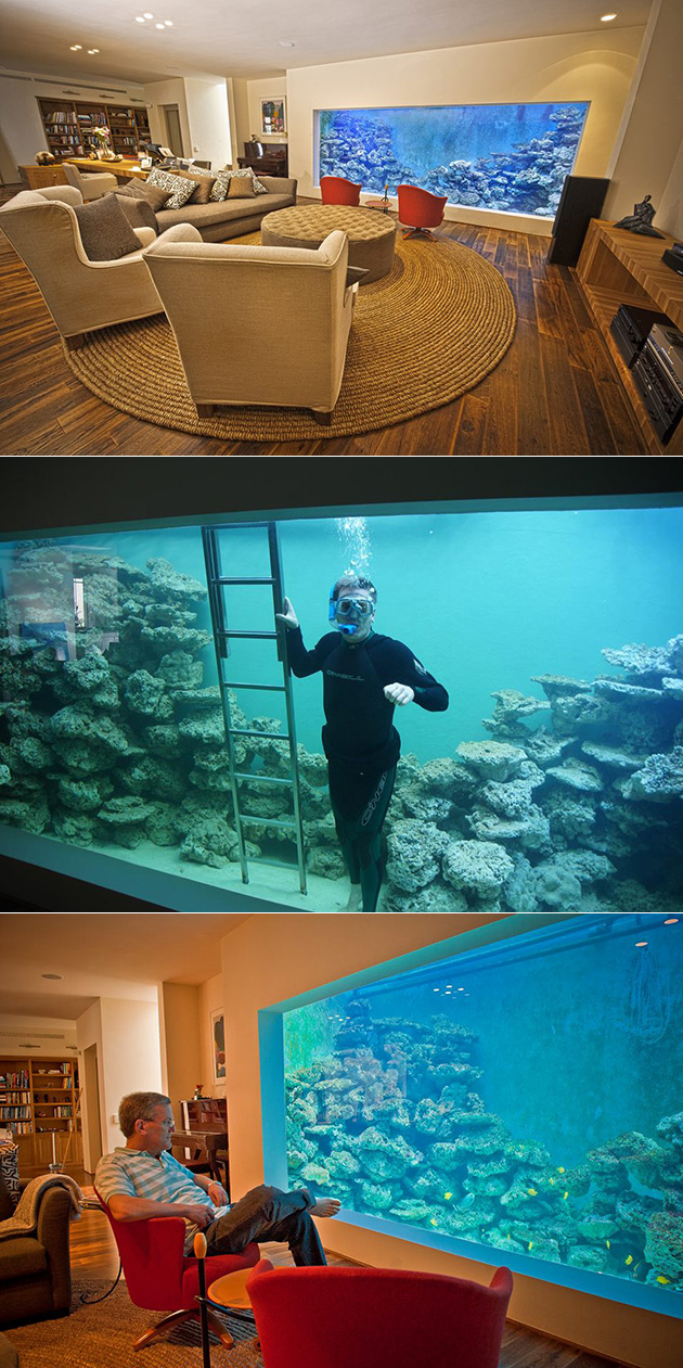 Man Builds Largest Home Reef Aquarium Can Hold 30 000